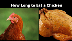 How Long to Eat a Chicken