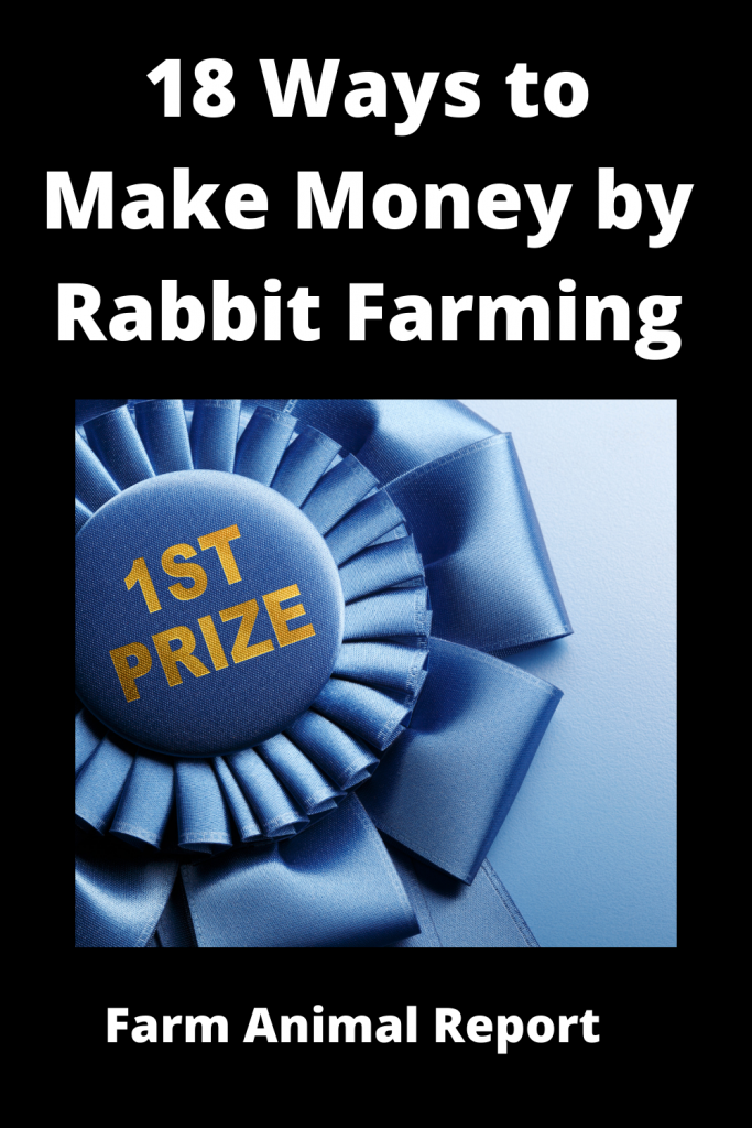 18 Ways to Make Money by Rabbit Farming—Extensive Guidelines for Rabbit Farmers 5