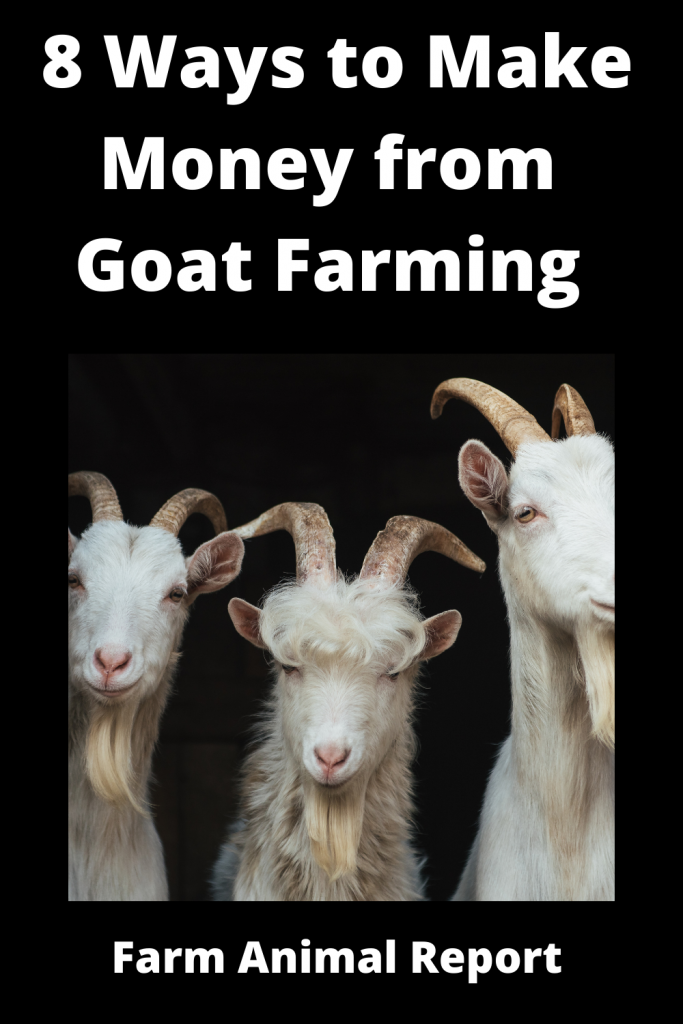 8 Ways to Make Money from Goat Farming 3