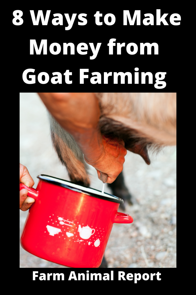 8 Ways to Make Money from Goat Farming 4